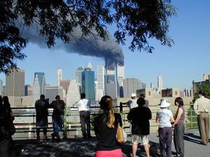 WTC 24